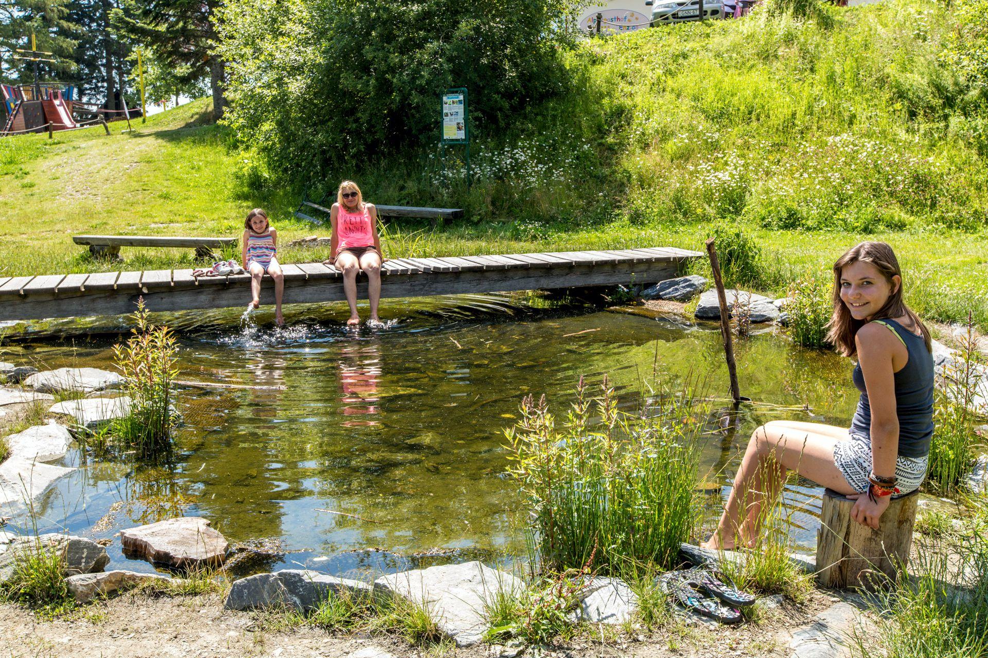 Schwimmen im Naturteich